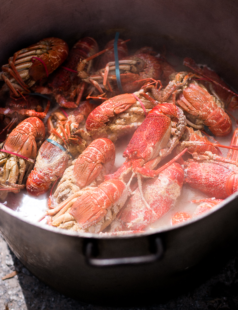 Crayfish ~ The Luminous Kitchen