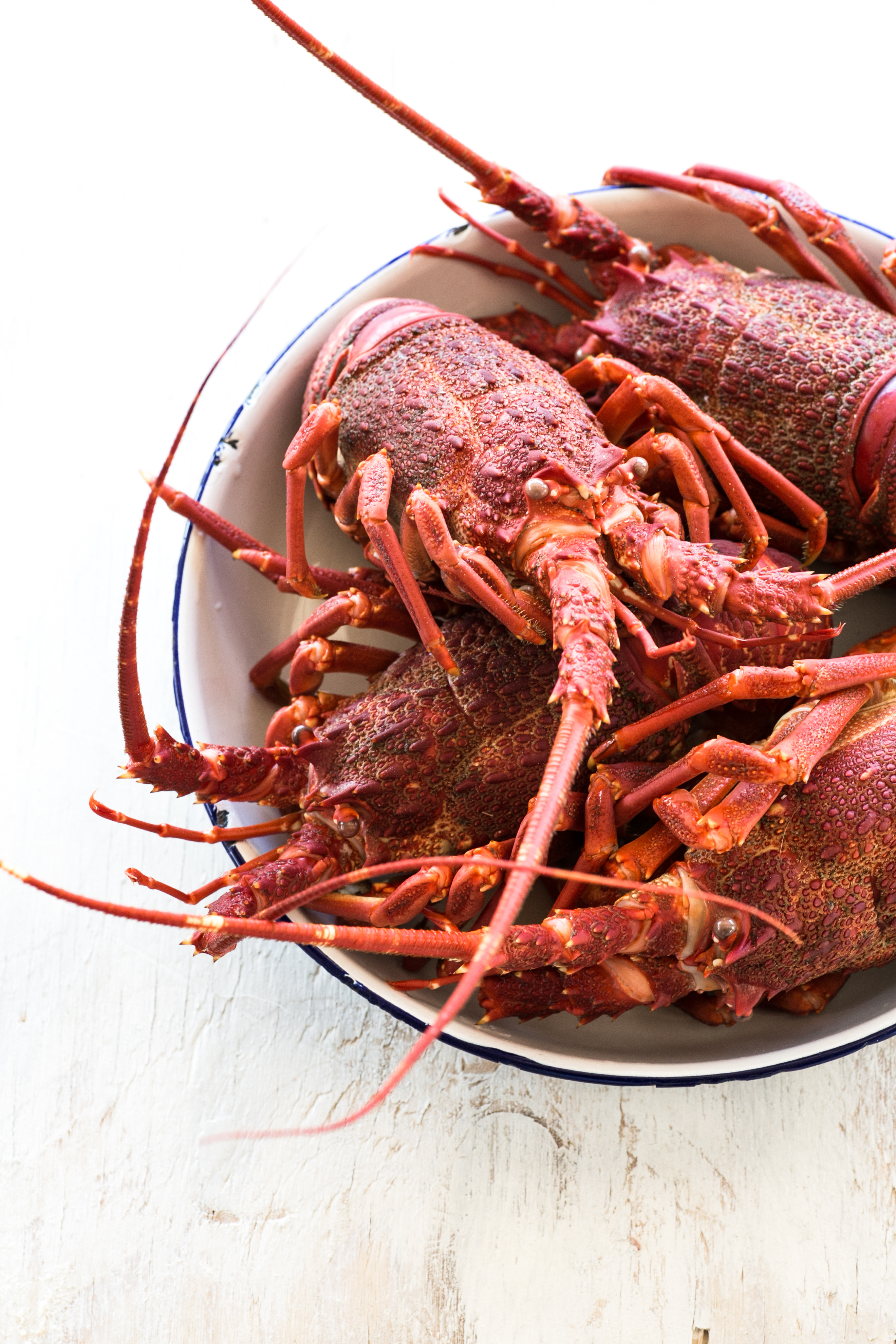 Crayfish tails in lemon butter and tales of the sea || The Luminous Kitchen