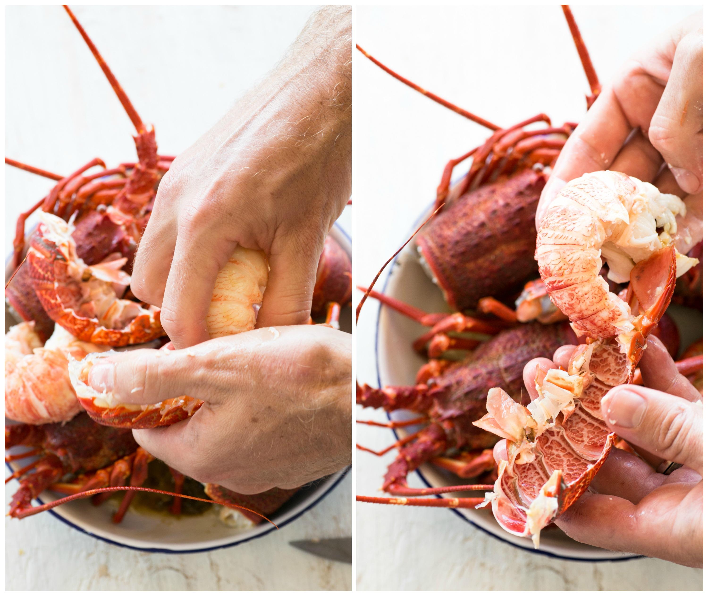 crayfish collage 7
