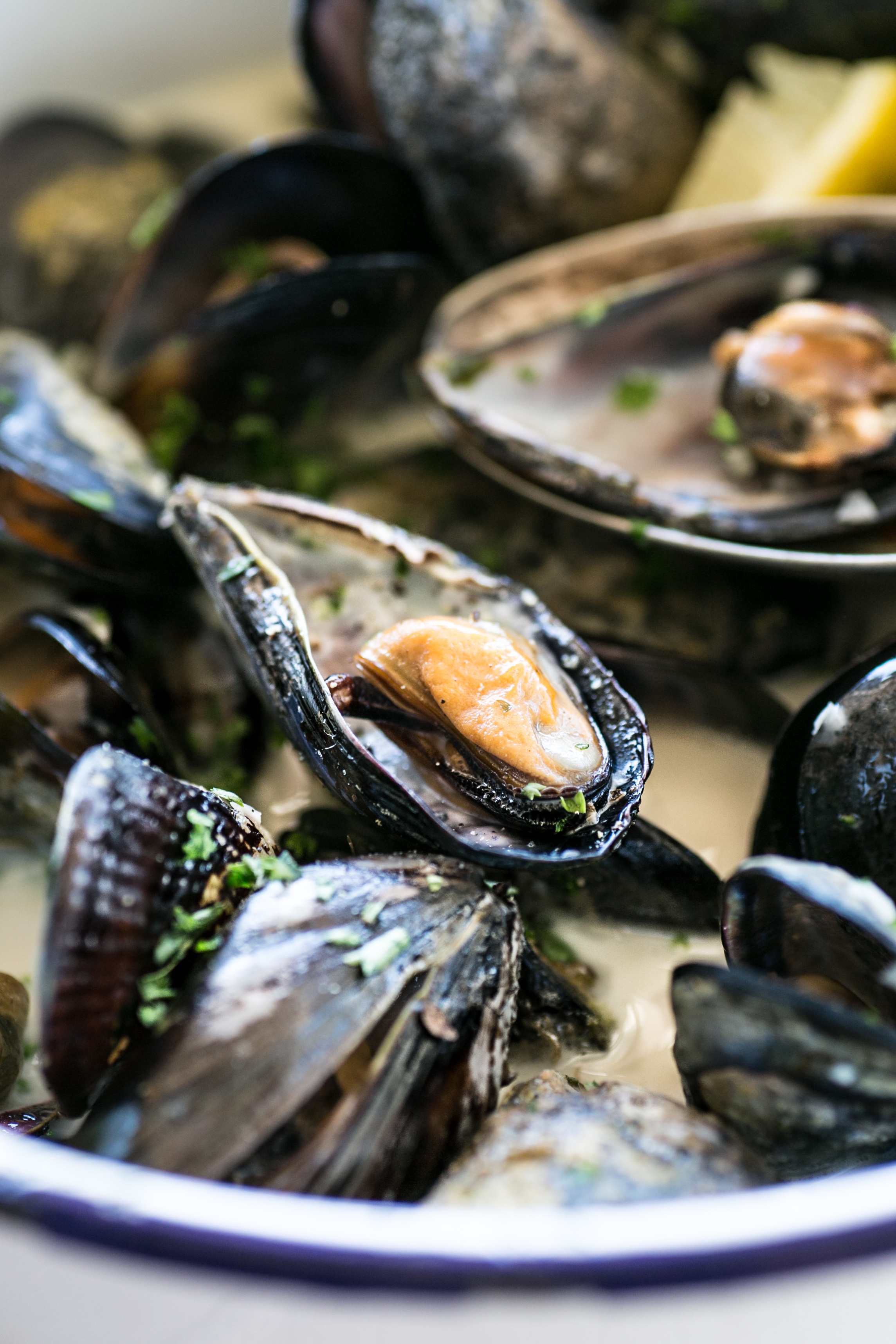 Black Atlantic Mussels in White Wine || The Luminous Kitchen