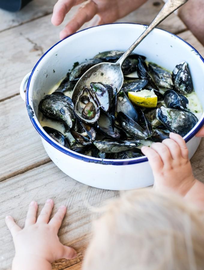 Black Atlantic Mussels in White Wine